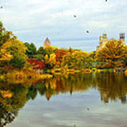 Autumn Colors - Nyc Art Print