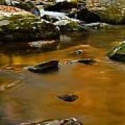 Autumn Colors On Little River Art Print