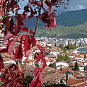 Autumn Colour - Ohrid - Macedonia Art Print