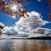 Autumn  Confidential  Art Print by Bob Orsillo