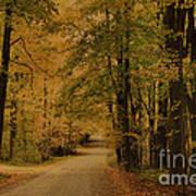Autumn Country Road Art Print