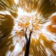 Autumn Explosion Art Print