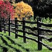 Autumn Fence And Shadows Art Print