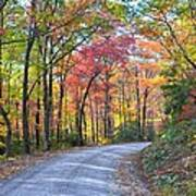 Autumn Forest Trail Art Print by Bob Jackson