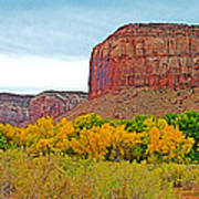 Autumn Gold On Highway 211 Going Into Needles District Of Canyonlands National Park-utah   Art Print