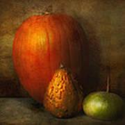 Autumn - Gourd - Melon Family  Art Print by Mike Savad