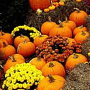Autumn Harvest 6 Art Print