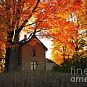 Autumn Haunt Art Print