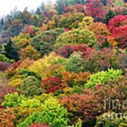 Autumn Highland Scenic Highway Art Print