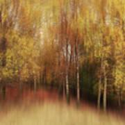 Autumn Impression Art Print