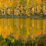 Autumn Impressions 2 Art Print