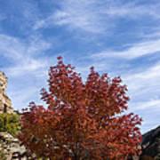 Autumn In Glenwood Canyon - Colorado Art Print