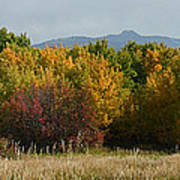 Autumn In Idaho Art Print