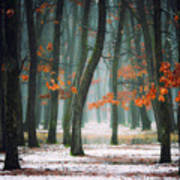 Autumn In My Soul Art Print