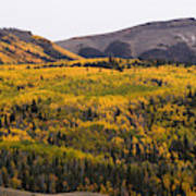 Autumn In The Colorado Mountains Art Print