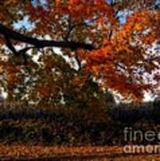 Autumn In The Country Art Print by Inspired Nature Photography Fine Art Photography