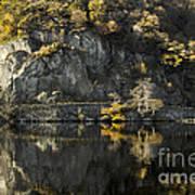 Autumn In The Lake Art Print