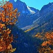Autumn In The Sierras Art Print