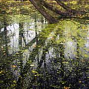 Autumn In Wildwood Park Art Print