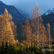 Autumn Into Winter - Cairngorm Mountains Art Print