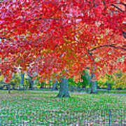 Autumn In Central Park Art Print