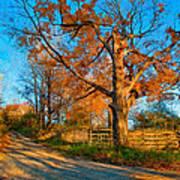 Autumn Lane Mpasto Art Print