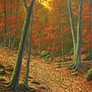 Autumn Leaf Litter Art Print