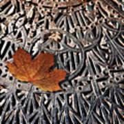 Autumn Leave On Iron Grate Art Print