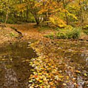 Autumn Leaves In Burn Vertical Art Print