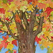 Autumn Leaves 1 Art Print