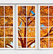 Autumn Maple Tree View Through A White Picture Window Frame Art Print