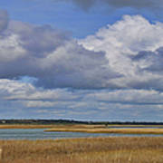 Autumn Marsh At Shell Island Art Print