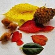 Autumn Medley Art Print by Jeff Kolker