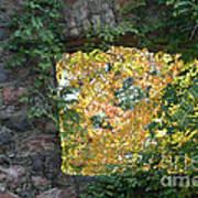 Autumn Naturally Framed Art Print
