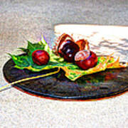 Autumn Offering Art Print
