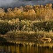 Autumn On The Klamath 3 Art Print