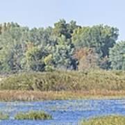 Autumn On The Marsh Art Print
