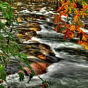 Autumn On The River Art Print
