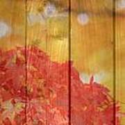 Autumn Outdoors 1 Of 2 Art Print