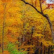 Autumn Peak Colors Art Print