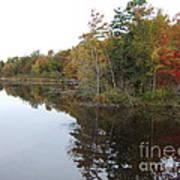 Autumn Reflection Art Print by Margaret McDermott