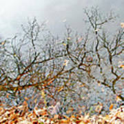 Autumn Reflections On Alloway Lake Nj Art Print