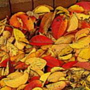 Autumn Remains 2 Art Print