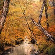 Autumn Riches 1 Art Print