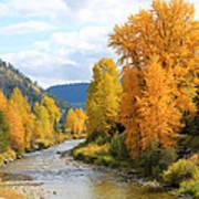 Autumn River In Montana Art Print