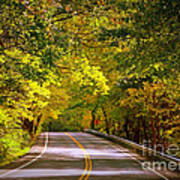 Autumn Road Art Print by Carol Groenen