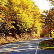 Autumn Road Print by Mary Koval