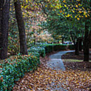 Autumn Side Walk Art Print