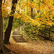Autumn Stairs Art Print
