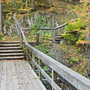 Autumn Steps Near Smalls Falls In Maine Art Print